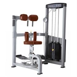 Торс-машина Bronze Gym D-011 - фото 11158