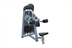 Дельтовидные сидя Grome Fitness AXD5005A - фото 22158