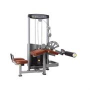 Сгибание ног Bronze Gym D-013C